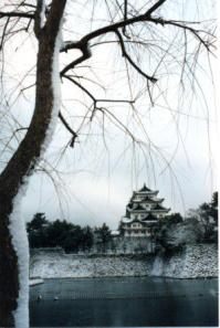 The castle at Nagoya, where Rhonda lived