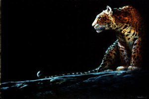 Full Moon Rising Leopard image by John Seerey Lester